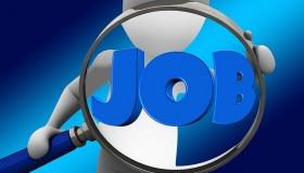 Nově vypsané volné pracovní pozice